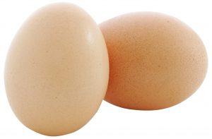 eggx2