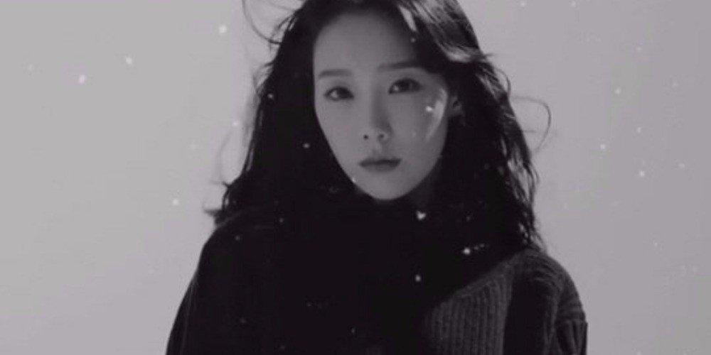 ေနာက္ထြက္မယ့္ အယ္လ္ဘမ္နဲ႔ပတ္သက္ၿပီး Promote လုပ္လုိက္တာေၾကာင့္ ေဝဖန္ခံခဲ့ရတဲ့ Taeyeon
