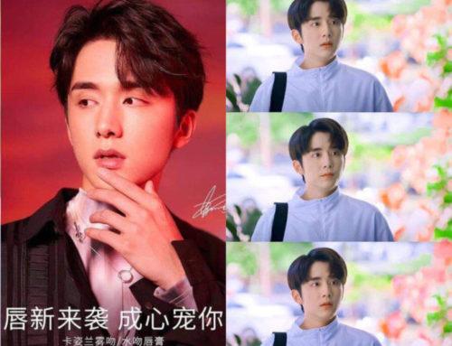 Zhang Xincheng ပါဝင်သရုပ်ဆောင်ထားတဲ့ဇာတ်လမ်းတွဲများ
