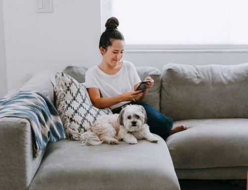အိမ်မှာနေရင်း ပျင်းလာတဲ့အချိန် Social Media သုံးမယ့်အစား ပြုလုပ်နိုင်တဲ့အရာ (၈) ခု