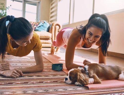 အိမ်မှာနေရင်း ဗိုက်အဆီကျစေဖို့ ပြုလုပ်နိုင်တဲ့ လေ့ကျင့်ခန်း (၉) ခု