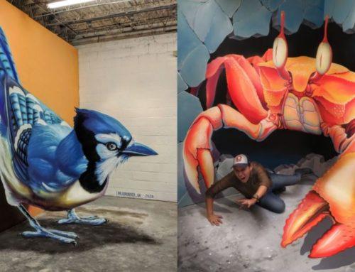 ဘာမှမရှိတဲ့ လမ်းမတွေကို သက်ဝင်ထင်ရှား 3D ပန်းချီကားတွေနဲ့ ထင်ပေါ်စေခဲ့တဲ့ မက္ကဆီကန်အနုပညာရှင်